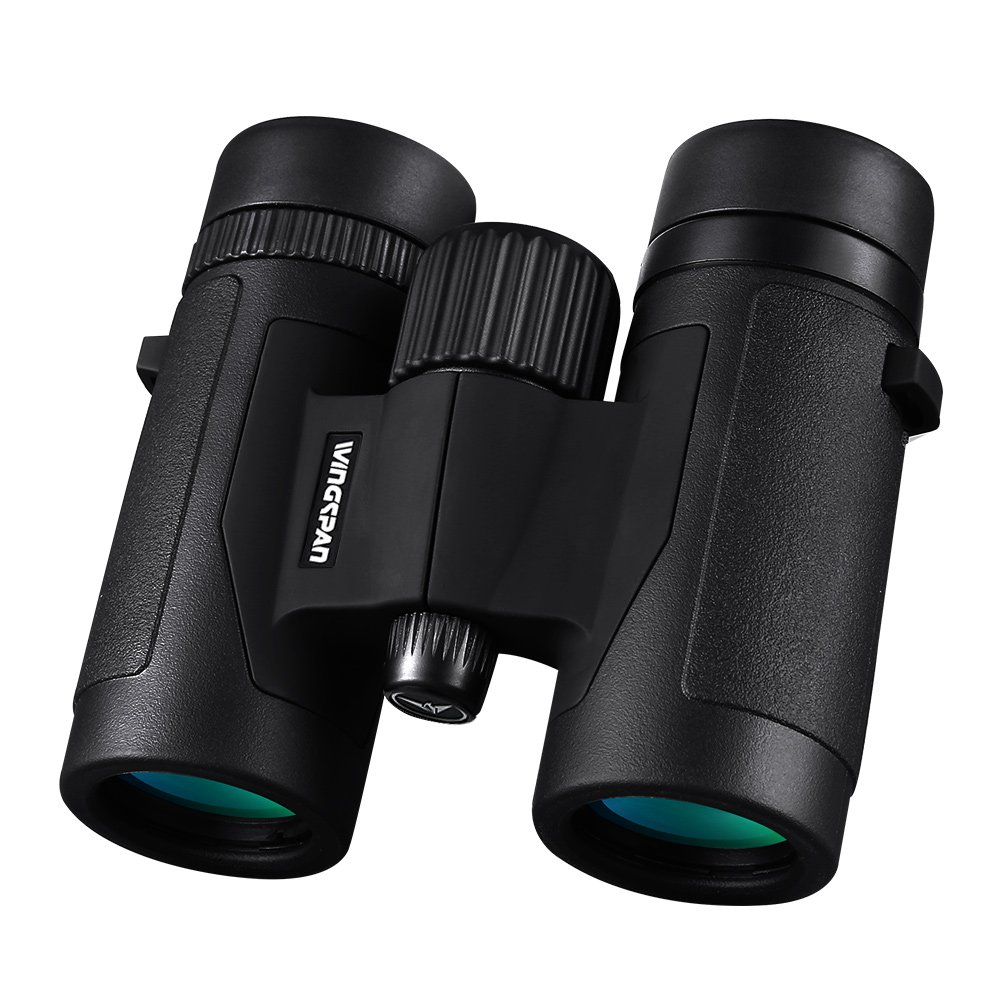 Wingspan Optics FieldView 8X32 Compact Binoculars for Bird Watching.