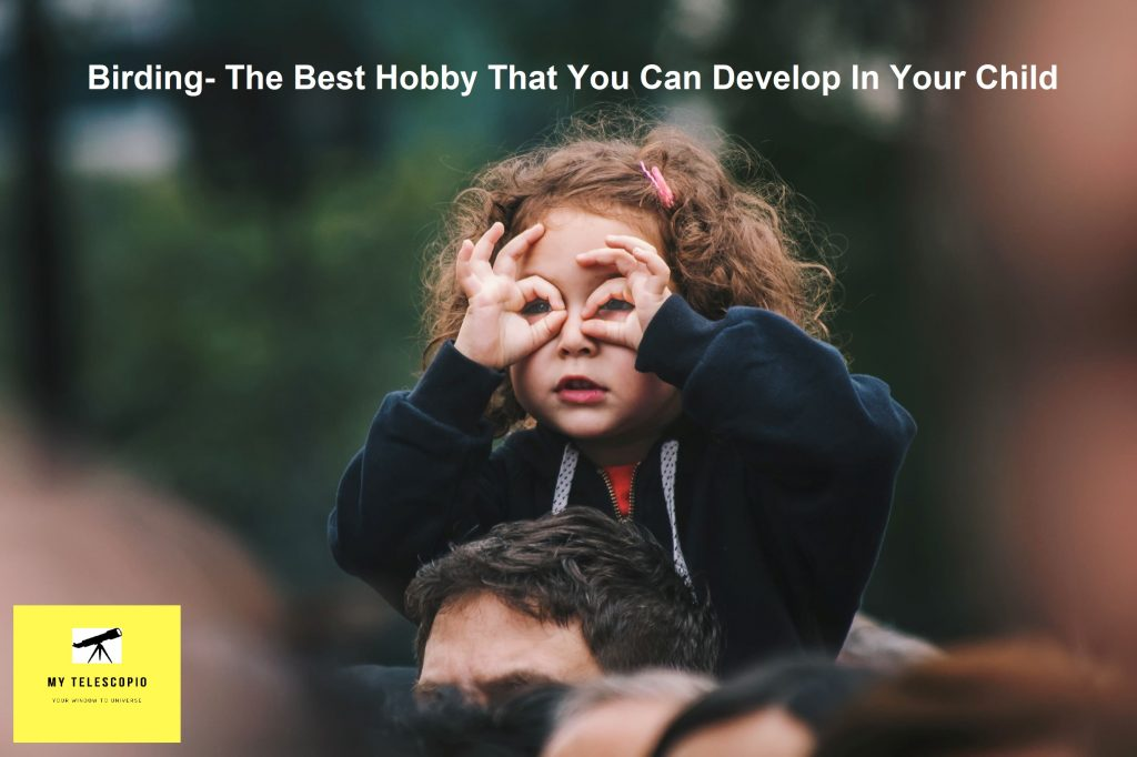 Birding- The Best Hobby That You Can Develop In Your Child