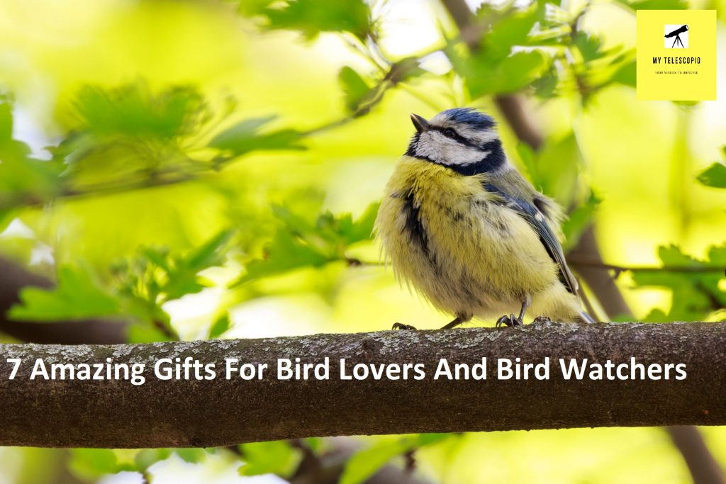 7 Amazing Gifts For Bird Lovers And Bird Watchers