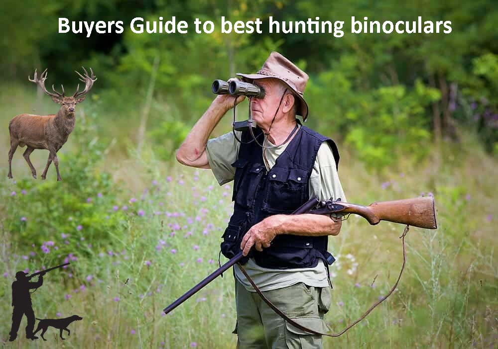 Best Binoculars for Hunting 2020